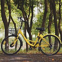 Ein gelbes Fahrrad steht quer auf einem Waldweg.